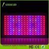 Der Leistungs-LED volle Wasserkultur das Spektrum Pflanzendes licht-900W wachsen Licht