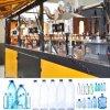 6 máquina del moldeo por insuflación de aire comprimido de la botella de agua del animal doméstico de las cavidades 0.2L -0.6L
