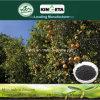 Agente microbico del carbone di legna di bambù del fertilizzante di alta qualità di Kingeta