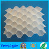 Honeycomb hexagonal Sloped Tube Filler para Industrial Water Treatment