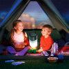 Lampe-torche en plastique escamotable pour l'éclairage campant (BT-SM501)
