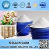 Heißer Verkaufs-Nahrungsmittelgrad BP niedrig/hoch Acyl Gellan Gummi-Puder
