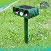 Ultrasonido solar al aire libre Repeller-Mouse Animal Repeller Repeller Serpiente animales Chaser Pest Repeller