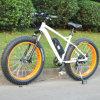 Último modelo de bicicleta de montaña de neumáticos de grasa E