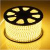 Striscia di tensione LED di AC120V 5W/M SMD5050 50LEDs/M