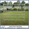 Valla de ganado de tubo galvanizado de instrumentos, tubo de metal Panel valla de ganado