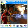 Protezioni cape ellittiche servite fabbrica professionale del fornitore