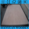madera contrachapada del anuncio publicitario de 12m m Okoume