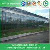 Estufa elevada de Polytunnel da agricultura do PE de Qaulity para a venda
