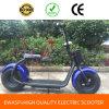 Vespa popular del estilo 1000W Hoverbord de Harley con un asiento y dos ruedas