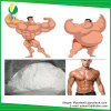 Polvere steroide dell'estratto della Cambogia di Garcinia dell'ormone di alta qualità per perdita di peso