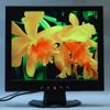 Moniteur de TFT-LCD (KRS-17A02BB)