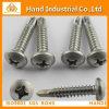 Ss304 / 316 DIN7504n Phillips Tornillo autoperforante