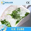 fabricante da máquina do cubo de gelo 10tons com os 2 compressores de Bitzer