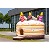 Bouncer della torta di compleanno di prezzi di fabbrica