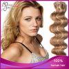 Trama malese dell'unità di elaborazione dei capelli del Virgin dell'onda del corpo di colore 14#/613# di P