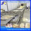 Máquina de lavar industrial do alho da máquina da limpeza vegetal (QD-QP4000-800)