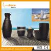 新しいデザインつぼの形2つのシートの屋外の庭の家具のテラスの藤の余暇表セットが付いている表
