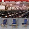 Presidenze comuni delle Tabelle del ristorante di disegno nel buon prezzo Yc-Zg175