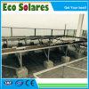 Capteur solaire de vente chaud de panneau de plaque plate, collecteur thermique solaire sélecteur