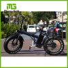 2017新しい36Vリチウム電池の折られた電気バイク
