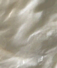2, 3-Epoxypropyltrimemonium Chloridethylam (ETA)