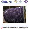 Grande qualidade da bobina de aço com revestimento de cor/PPGI para coberturas