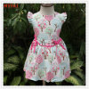 Belle robe de filles de vêtements de bébé d'été pour des vêtements de gosses