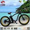 강력한 750W 후방 모터 뚱뚱한 타이어 전기 바닷가 자전거