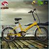 Motorino piegante elettrico della bici En15194 di E per l'adulto