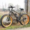 bici grassa della gomma E di 48V Cina