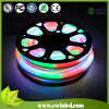 RGB Controller를 가진 IC Digital Flexible Neon Rope