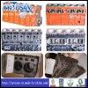Weichai/Yuchai/Chaochai/ヒュンダイのトラックのためのシリンダブロック