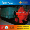 Pompa ad acqua elettrica di aspirazione centrifuga di conclusione