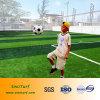 スポーツのための人工的な泥炭、フットボール、証明されるSGSとのサッカー