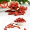 Wolfberry chinois Wolfberry sec par Ningxia