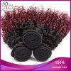 Kinky brasiliano Curly Ombre Virgin Hair per le donne di colore