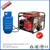 열 프레임 유형 3kw 가솔린 LPG 가스 발전기 Bl5000pg