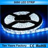 12V impermeabilizzano la striscia flessibile dell'indicatore luminoso di 5050 SMD LED