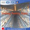 La volaille automatique posent la cage de poulet de batterie de grilleur