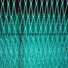 Fibra di UHMWPE nello Special della rete da pesca