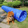 Túnel do cão da agilidade do treinamento do cão