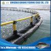 Sebauernhof-Fisch-Rahmen, Fisch-Teich, fischen Nettobeutel-heißen Verkauf