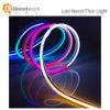13W/m DC24V 60pcs néon LED SMD 5050 Flex Strip Light SPI pour la décoration