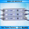 lettera d'accensione della Manica dei moduli di 12V SMD 5050 LED