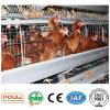 Ячеистая сеть клетки цыпленка слоя техника Poul автоматическая (оборудование цыплятины)
