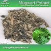 100%Natura Mugwort Leaf Extract (5: 1, 10:1, 20: 1)