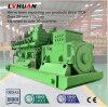Conjunto de gerador de gás de biogás de montagem padrão de 500kw, eletricidade da usina