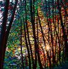 Forêt avec le coucher du soleil sur la peinture à l'huile