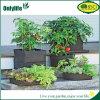 Onlylife PET Gemüse wächst Beutel-Garten-Pflanzenbeutel